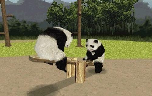 National Geographic Panda; Para los Pequeños del Hogar