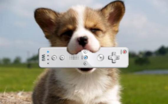 ¡¡Mi mamá mató a mi perro con el Wiimote!!