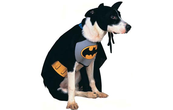 batman_perro