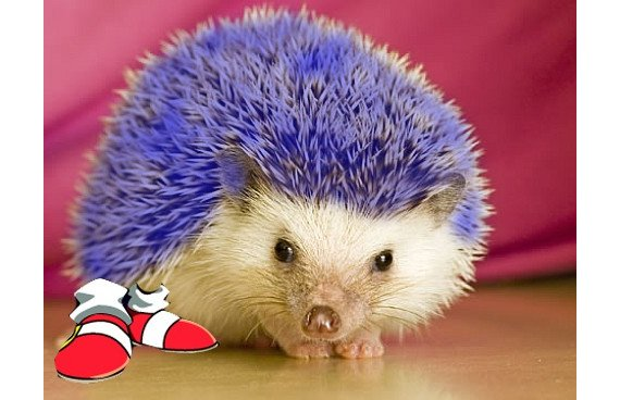 Sonic vuelve al glorioso 2d [Trailer]