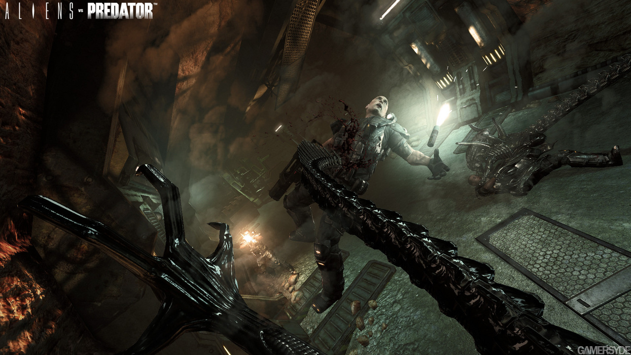 Alien vs Predator, Edición Especial Hunter sale a abrazar tu rostro...