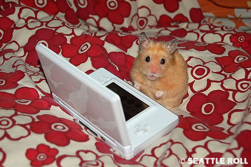 hamstercon_nintendo_ds