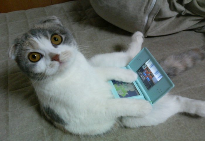 Nintendo logra cifras record en ventas en su consola Nintendo DS durante el 2010 [Cifras Reguleques]