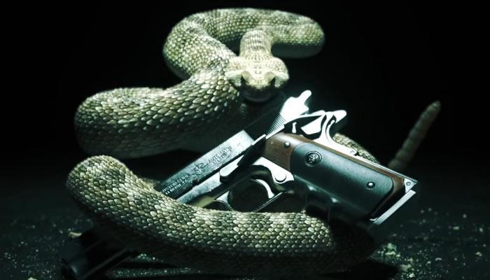 Hitman Absolution, algunos detalles del nuevo capitulo del agente 47