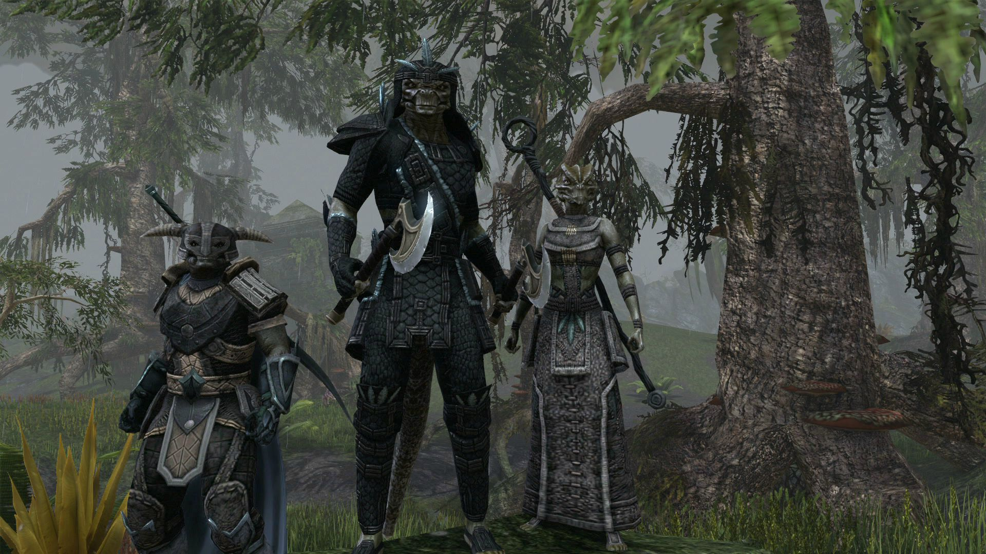 Ya puedes inscribirte a la beta de The Elder Scrolls Online [Adios Vida!!!]