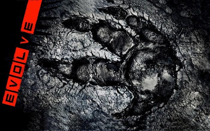 Evolve footprint