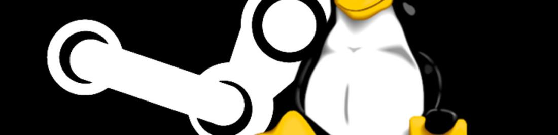 Un año jugando en Linux [Opinión Pingüina]