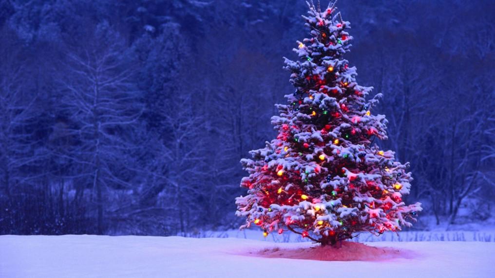 LagZero les desea una feliz navidad