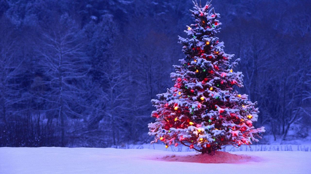 De parte del equipo de LagZero les deseamos una feliz navidad