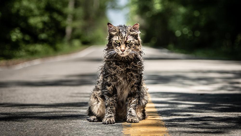 Pet Sematary es una decente adaptación de la novela